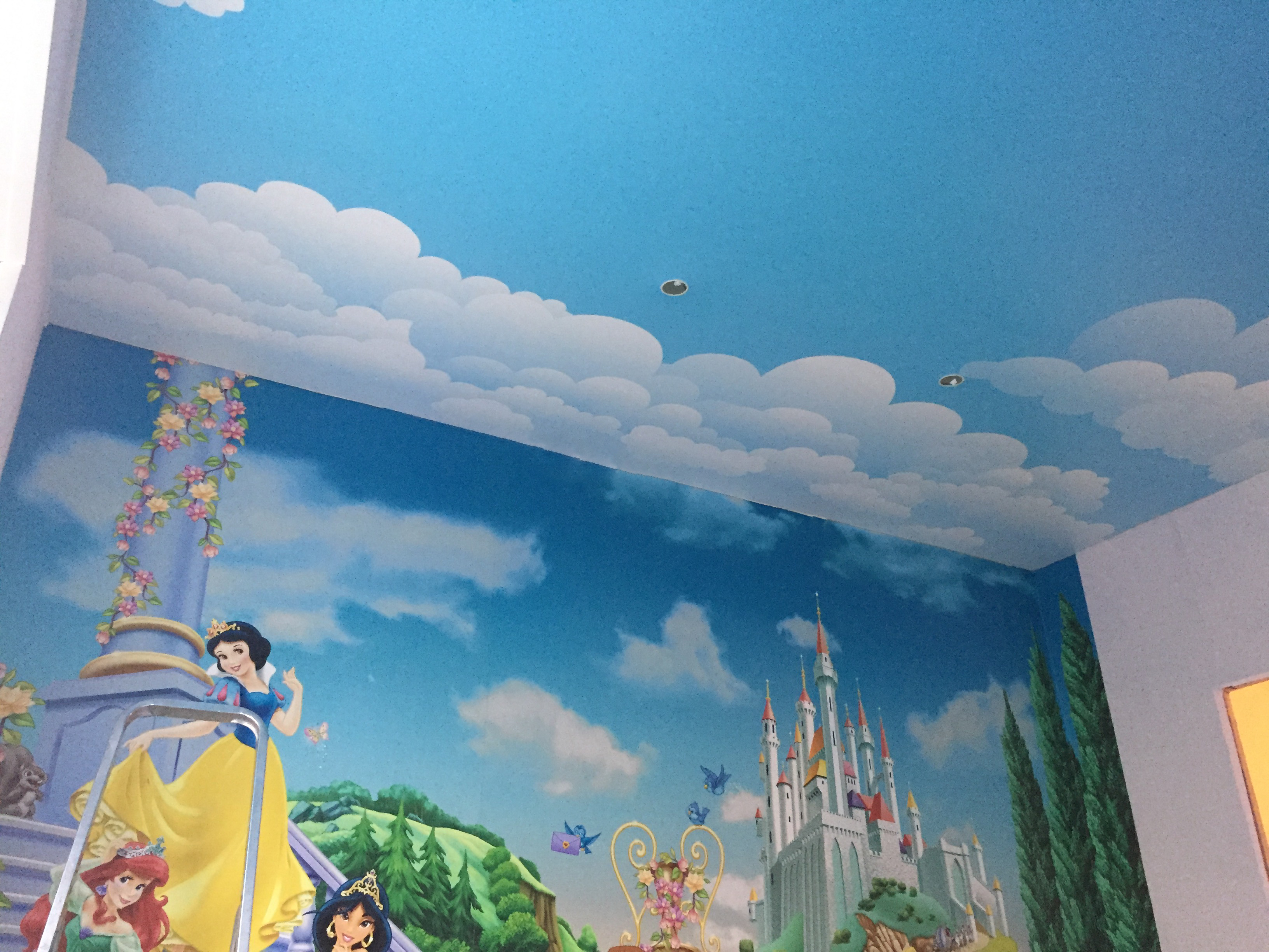 фотопечать на потолке облака в архангельске