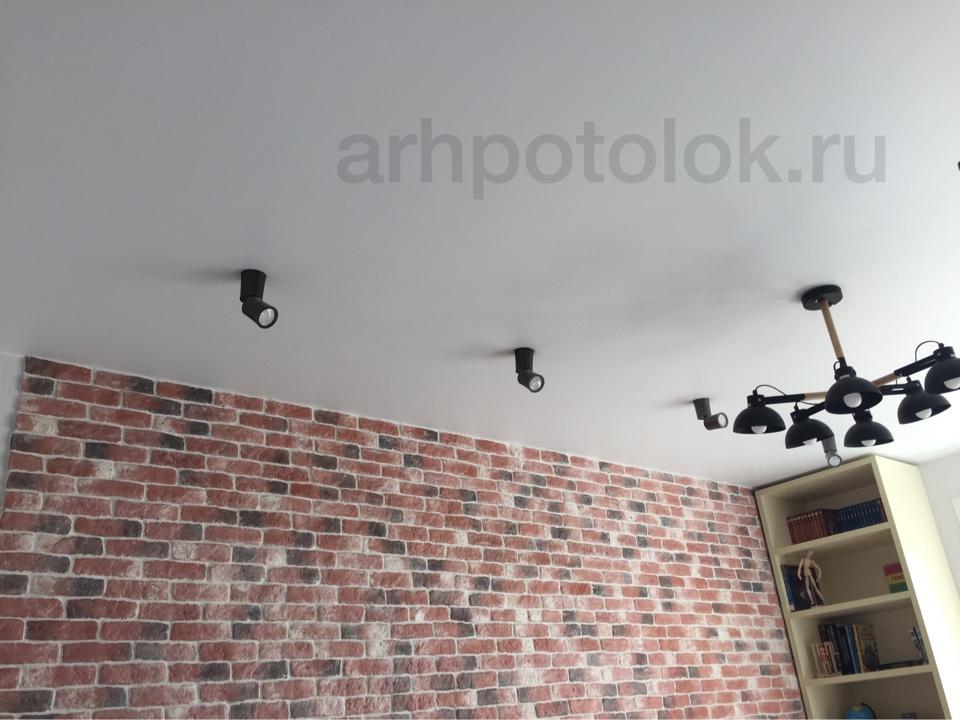 натяжные потолки с светильниками в Архангельске